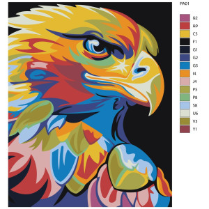 """Paint by Numbers """"Colorful eagle"""", 40x50cm, PA01"""