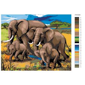 """Paint by Numbers """"Elephants on the way"""",..."""