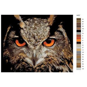"Paint by Numbers ""Owl portrait"", 40x50cm, A422"