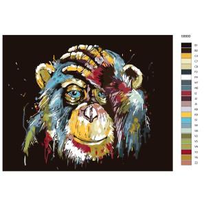 """Paint by Numbers """"Monkey I"""" , 40x50cm, KTMK-59990"""