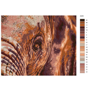 """Paint by Numbers """"Elephant eye"""" , 40x50cm, A435"""