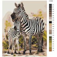 """Malen nach Zahlen """"Zebra mit Fohlen"""", 40x50cm, Z-AB46"""