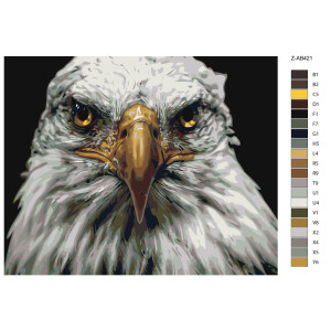 """Paint by Numbers """"Eagle head white"""", 40x50cm,..."""