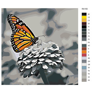 """Paint by Numbers """"Colorful butterfly on..."""