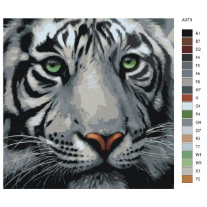 """Paint by Numbers """"White Tiger"""", 40x40cm, A373"""