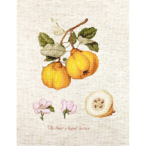 """Luca-s counted cross stitch kit """"The Pear shaped..."""