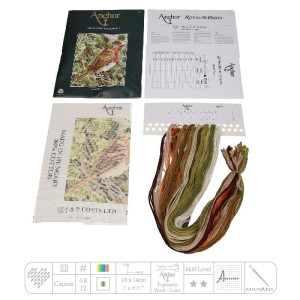 Anchor Starters stamped Tapisserie Stitch kit...