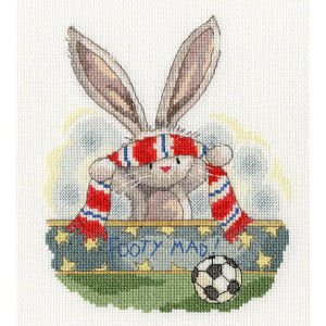 """Bothy Threads counted cross stitch Kit """"Footy..."""