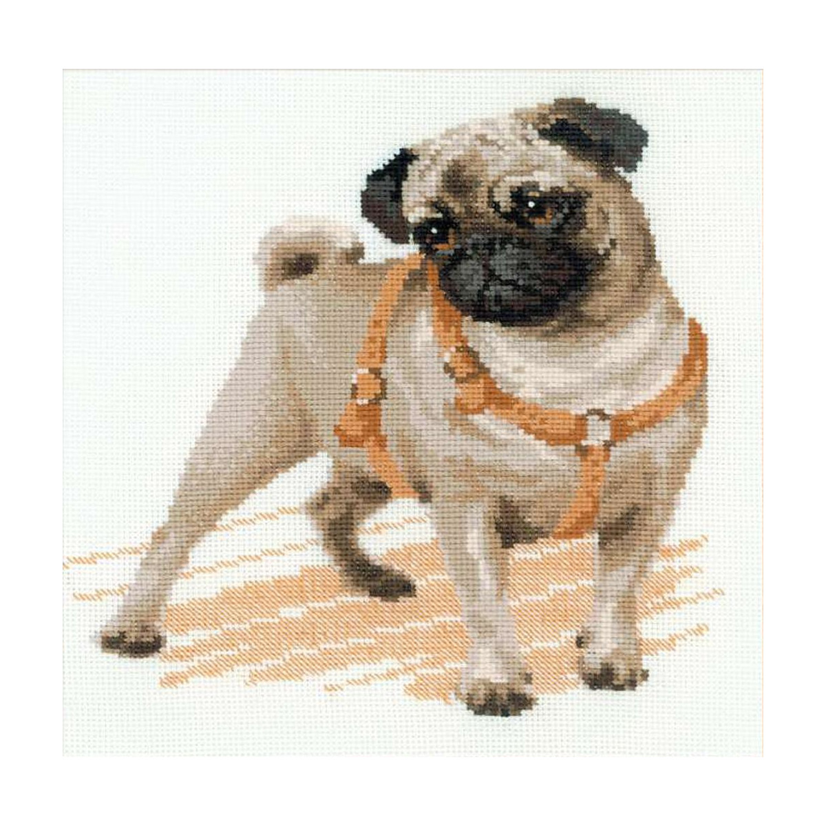 Pug Dog Riolis 11 59