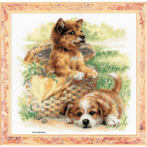 Riolis counted cross stitch Kit Tender Age, DIY