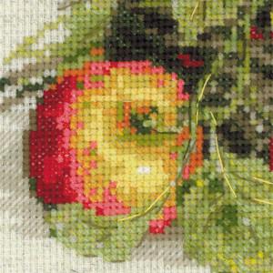 "Riolis Stickbild-Set ""Reife Äpfeln"", Zählmuster"