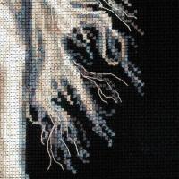 Riolis counted cross stitch Kit Andalusian Character, DIY