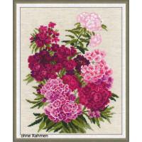 Riolis counted cross stitch Kit Sweet William, DIY