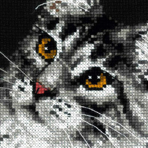 Riolis counted cross stitch Kit Maine Coon, DIY