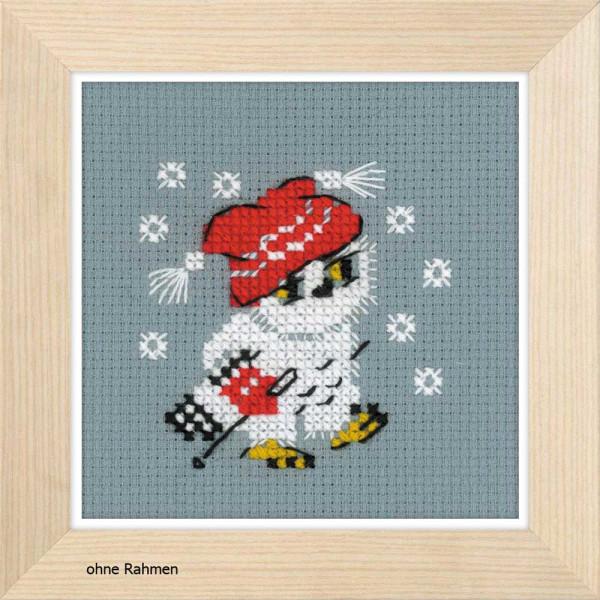 Riolis counted cross stitch Kit Snow, DIY