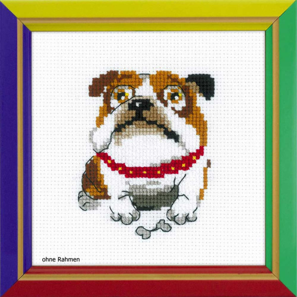 Riolis counted cross stitch Kit English Bulldog, DIY